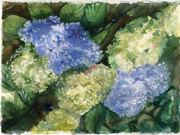 Flowers Painting - Hydrangesas by Ileana Carreno