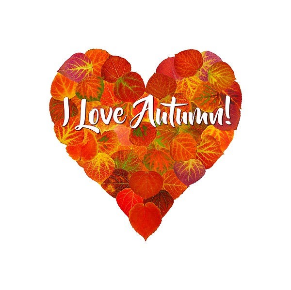 Heart Digital Art - I Love Autumn Red Aspen Leaf Heart 1 by Agustin Goba