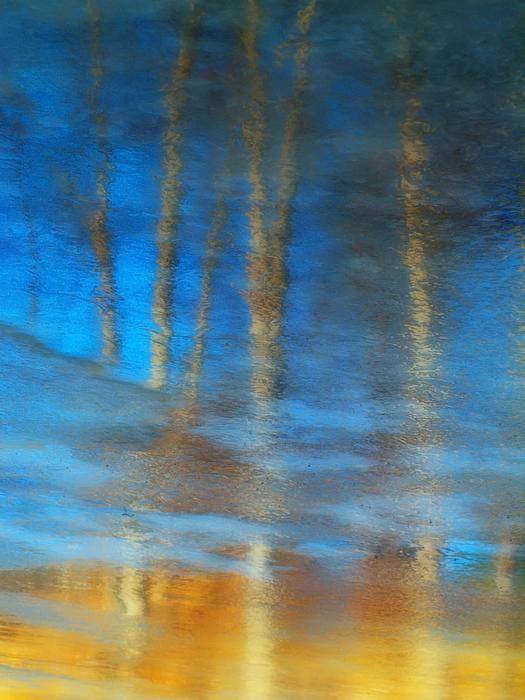 Ice Photograph - Ice Reflections by Tara Turner