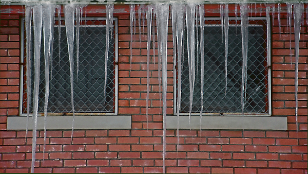 Ice Photograph - Icicles 2 - In Front Of Windows Off Red Brick Bldg. by Steve Ohlsen