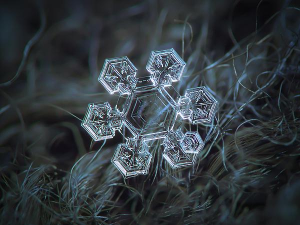 Snowflake Photograph - Icy Jewel by Alexey Kljatov