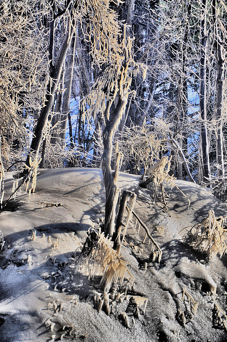 Ice Photograph - Icy Show by Emily Stauring