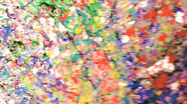 Floral Painting - Impressionistic Floral Fantasy  by Anne-Elizabeth Whiteway