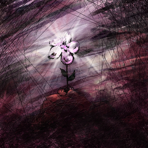 Abstract Digital Art - In All Things In Him by Rachel Christine Nowicki