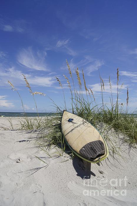 Surfboard Photograph - In The Dunes by Benanne Stiens