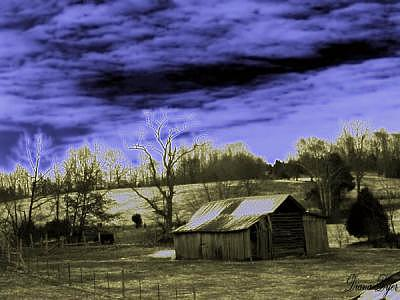 Farm House Photograph - In The Wind by Diana Dyer