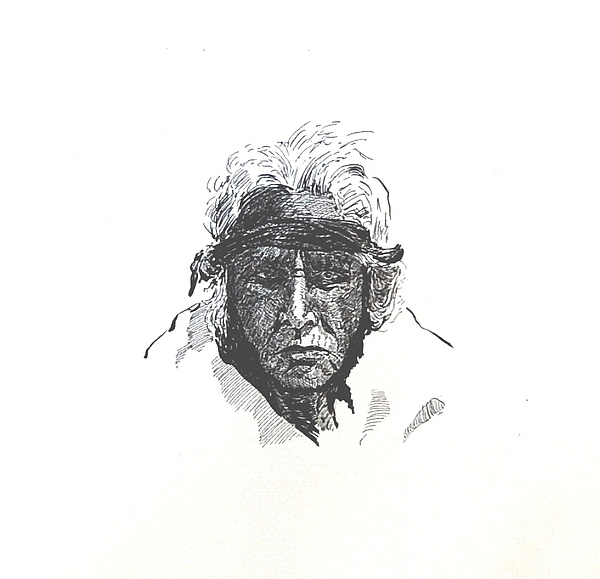 Indian Drawing - Indian Portrait by Smart Healthy Life