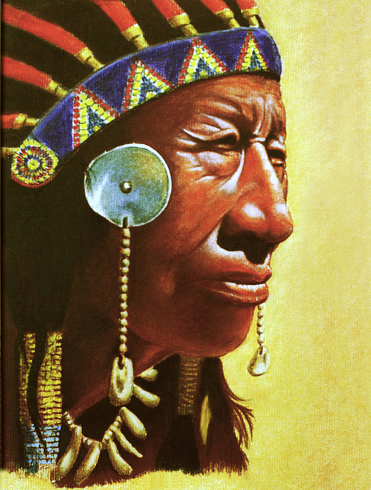 Indian Drawing - Indian Portrait by Martin Howard