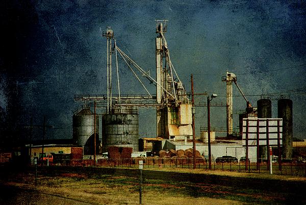 Farm Photograph - Industrial Farming In Texas by Susanne Van Hulst