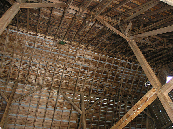 Barn Photograph - Inside Of The Barn by Janis Beauchamp