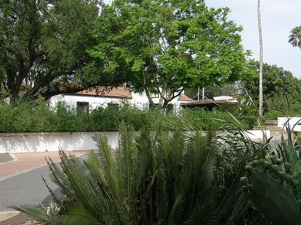 Landscape Photograph - Inside Quinta Mazatlan by Lisa Raudy