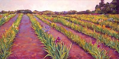 Landscape Painting - Iris Field by Jayne Rose