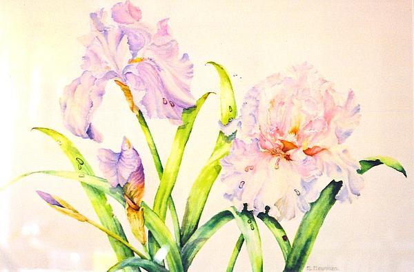 Irises Painting by Nancy Newman