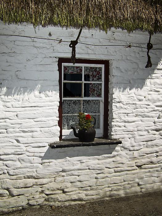 Irish Photograph - Irish Kettle Of Geraniums County Cork Ireland by Teresa Mucha