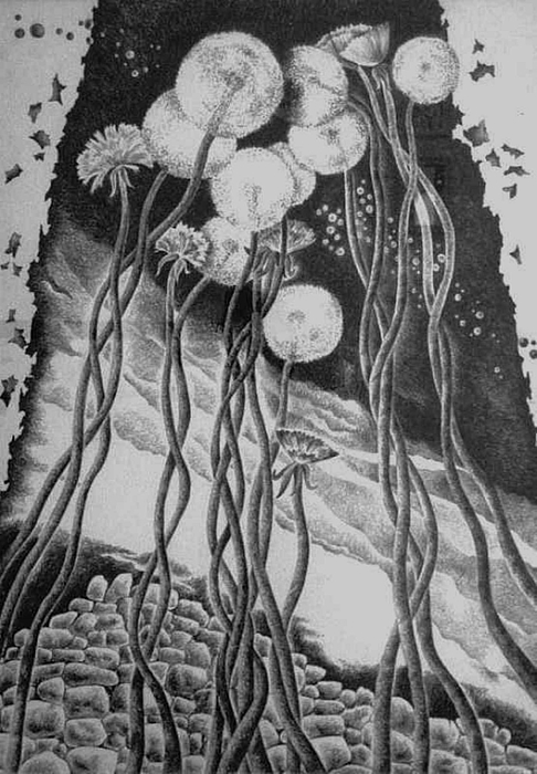 Pencil Drawing - Irradiation by Yelena Revis