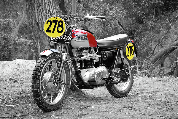 Motorcycle Photograph - Isdt Triumph Steve Mcqueen by Mark Rogan