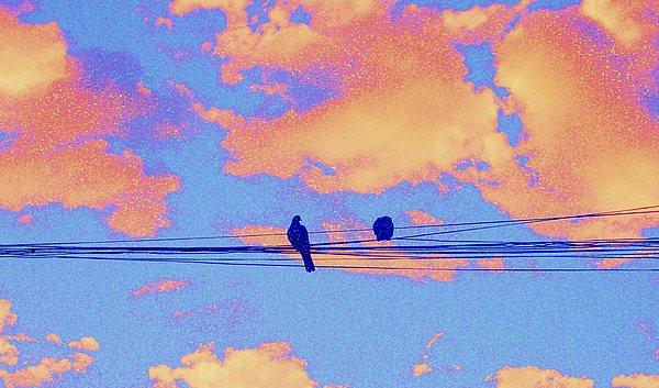 Bird Digital Art - Its Morning by Kathy Daxon