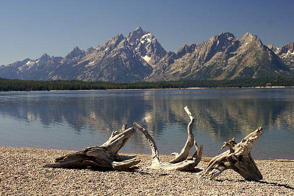 Grand Teton National Park Photograph - Jackson Lake 1 by Marty Koch