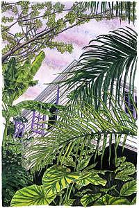 Tropical Painting - Jamaica Tree House by John Canning
