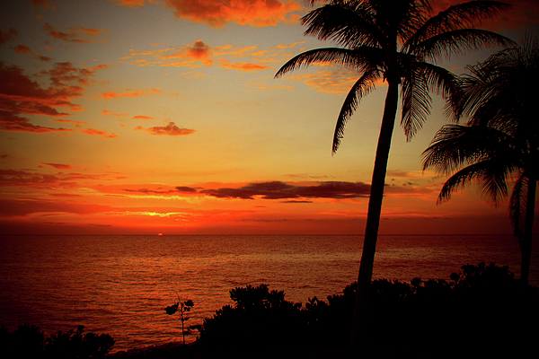 Jamaica Photograph - Jamaican Sunset by Kamil Swiatek