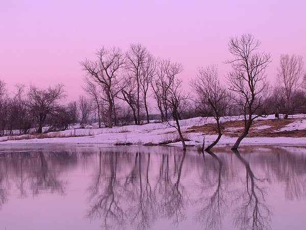 Sunset Photograph - January Thaw  by Lori Frisch