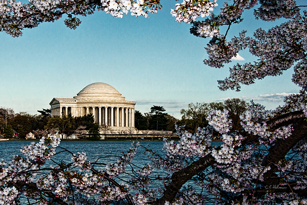 Memorial Photograph - Jefferson Memorial In Spring by Christopher Holmes