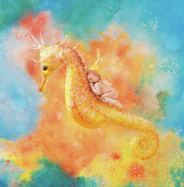 Under The Sea Photograph - Jessabella Riding A Seahorse by Anne Geddes