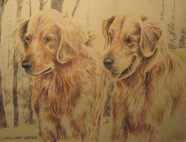 Dogs Drawing - Joes Dogs by Larry Whitler
