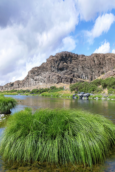John Day Photograph - John Day River Landscape In Summer Portrait by David Gn