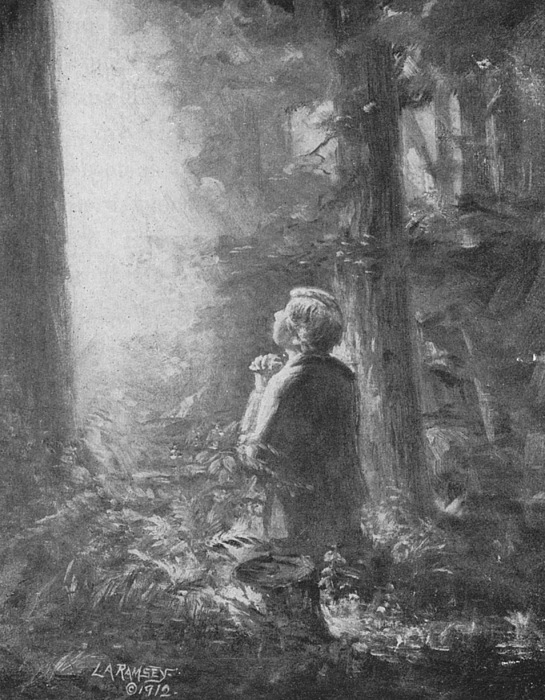 First Vision Painting - Joseph Smith Praying In The Grove by Lewis A Ramsey