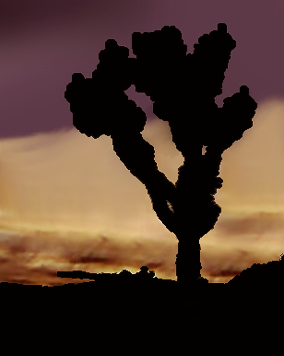 Joshua Tree Silo At Sunset Photograph by Curtis J Neeley Jr