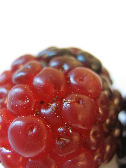Fruit Photograph - Juicy by Ashley Cauvel