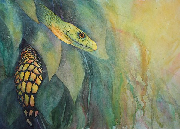 Ccaa Painting - Jungle Guardian by Judy Raley