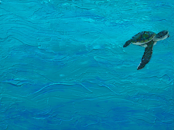 Baby Sea Turtle Painting - Just Hatched by Kristen Ashton