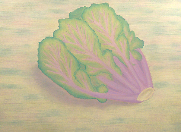 Kale Drawing - Kale by Brianna Lynn