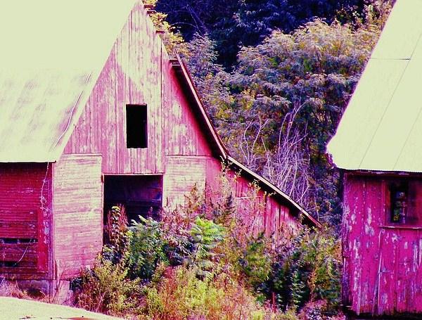 Barns Photograph - Kansas Country by Christine Belt