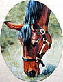 Thoroughbred Horse Painting - Katt by Ti  Tolpo Bader