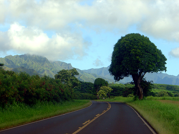 Kauai Photograph - Kauai Road by Davida Parker