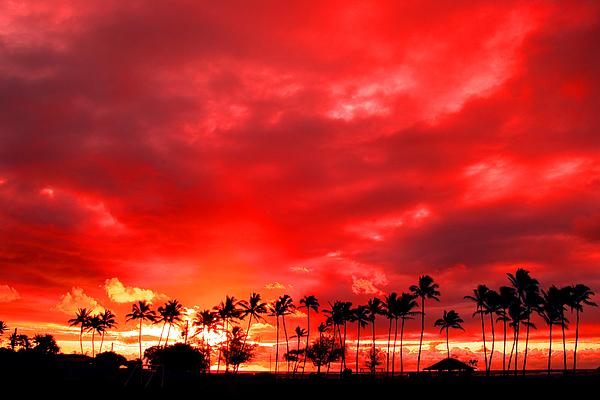 Beaches Photograph - Kauai Sunrise At Kappa by Greg Clure