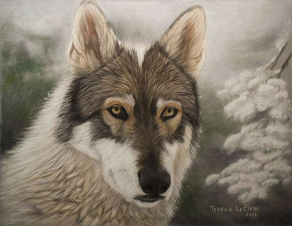 Wolf Painting - Keme by Teresa LeClerc