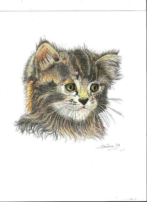 Cat Drawing - Kitten by Bill Hubbard