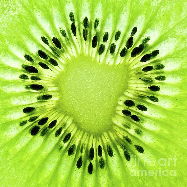 Kiwi Photograph - Kiwism by Delphimages Photo Creations