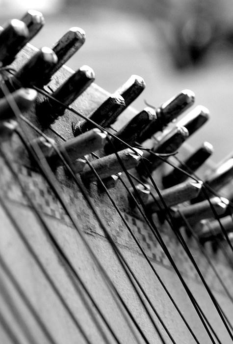 Strings Photograph - Kobza by Oksana Pelts