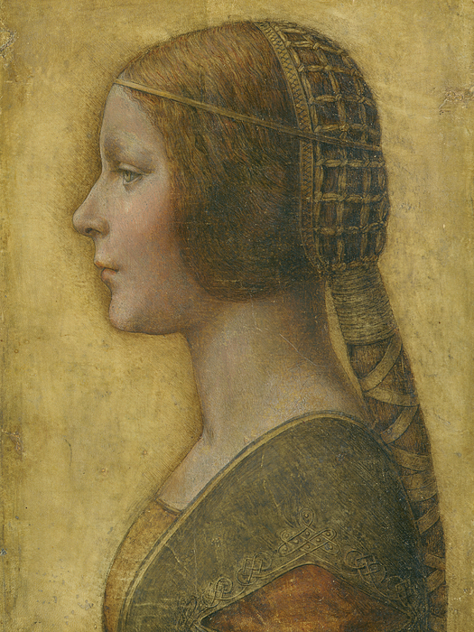La Bella Principessa Drawing - La Bella Principessa - 15th Century by Leonardo da Vinci