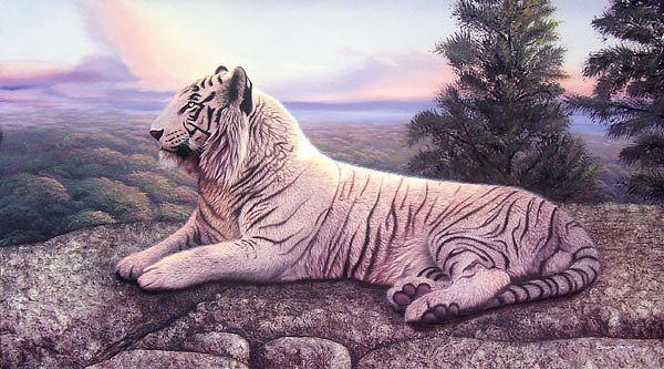 Tigers Painting - La Cumbre Del Rey Blanco by Sergio Gaspar