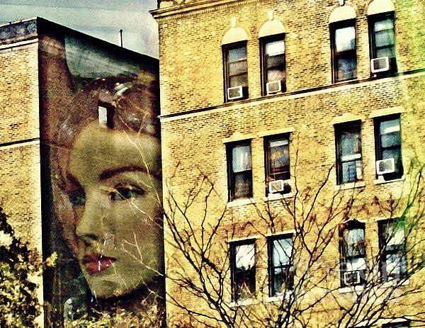 Face Photograph - Lady Of The House by Sarah Loft