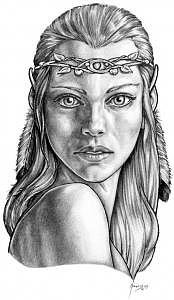 Lady Of The Wood Drawing by Don Higgins