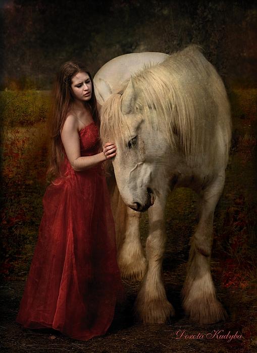 Horse Photograph - Lady With An Ermine  by Dorota Kudyba