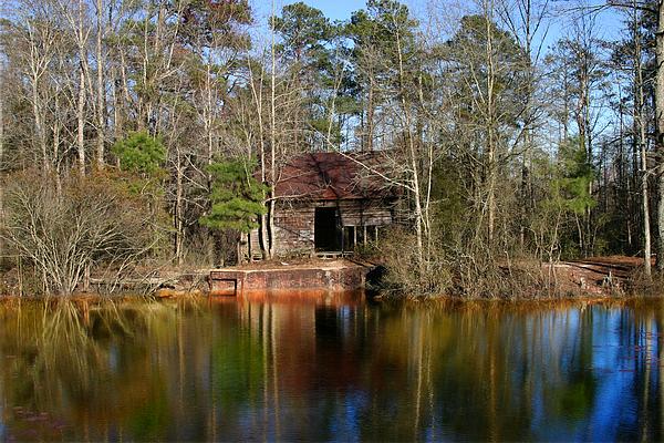 Lake Photograph - Lake Front South Carolina 08 by Cleatis Moore