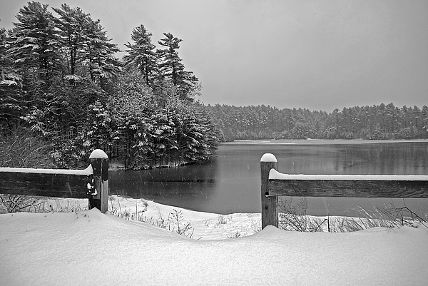 Snow Photograph - Lake Rico II by Mark Wiley